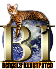 Bengals Illustrated-The Most Popular Bengal Cat Resource in the World!